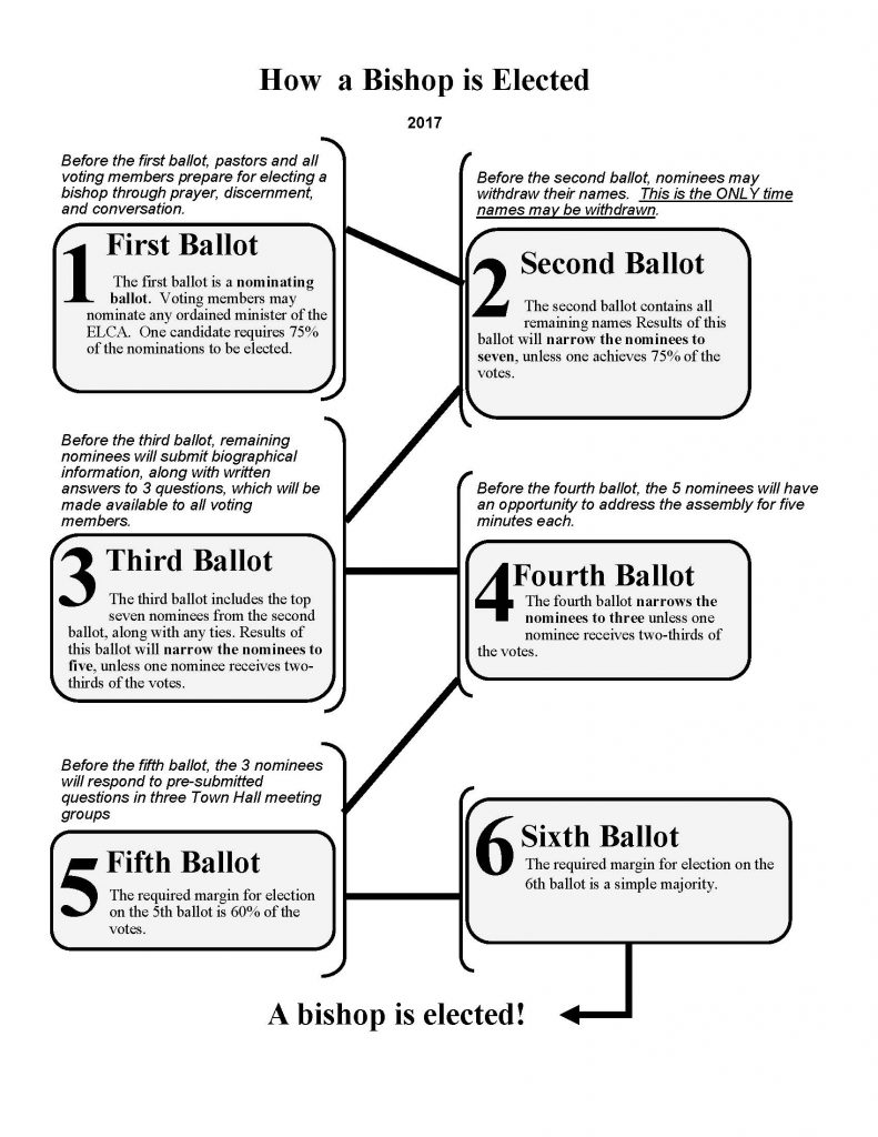 Bishops election florida bahamas synod 2017 synod assembly letter from council secretary bishop election flow chart geenschuldenfo Gallery